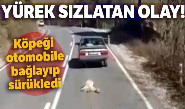Yürek sızlatan olay: Köpeği otomobile bağlayıp sürükledi - Tıkla izle