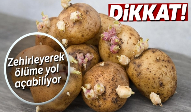 Filizlenen patatese dikkat