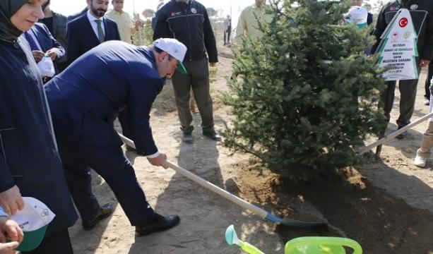 """Bakan Varank: """"Gezi Parkı'nda birkaç ağaç için sokağa çıkanların artan orman varlıkları ile ilgili tek bir sözünü duyamazsınız"""