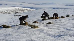 Konya'da Yaban hayvanları için doğaya 1 ton kuru yonca bırakıldı