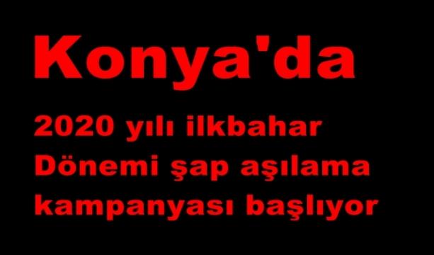 Konya'da 2020 yılı ilkbahar dönemi şap aşılama kampanyası başlıyor