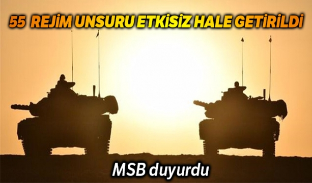 MSB: '55 Rejim unsuru etkisiz hale getirildi'
