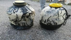 Konya'da Yasadışı sülük avına 73 bin lira para cezası