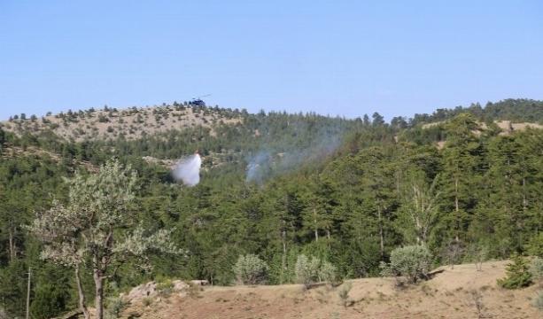 Konya'da ormanlık alanda yangın