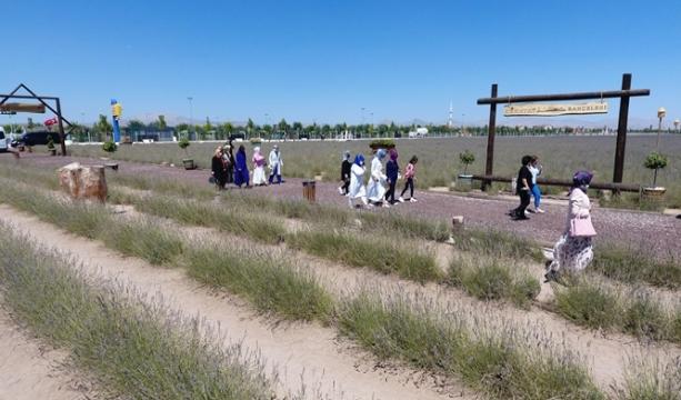 Belediye Başkanlarının Eşleri Karatay Lavanta Bahçesi'ne Hayran Kaldı