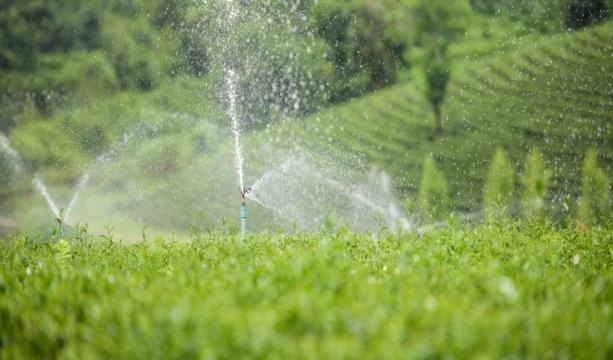 Konya'da küçük ölçekli sulama tesisleri ile tarım arazileri suya kavuşuyor