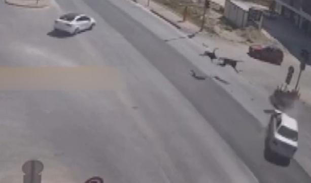 Konya'da Motosiklet sürücüsünün öldüğü kaza görüntüsü