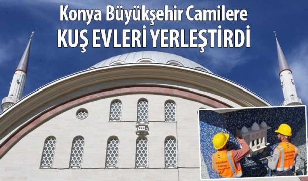 Konya Büyükşehir Camilere Kuş Evleri Yerleştirdi